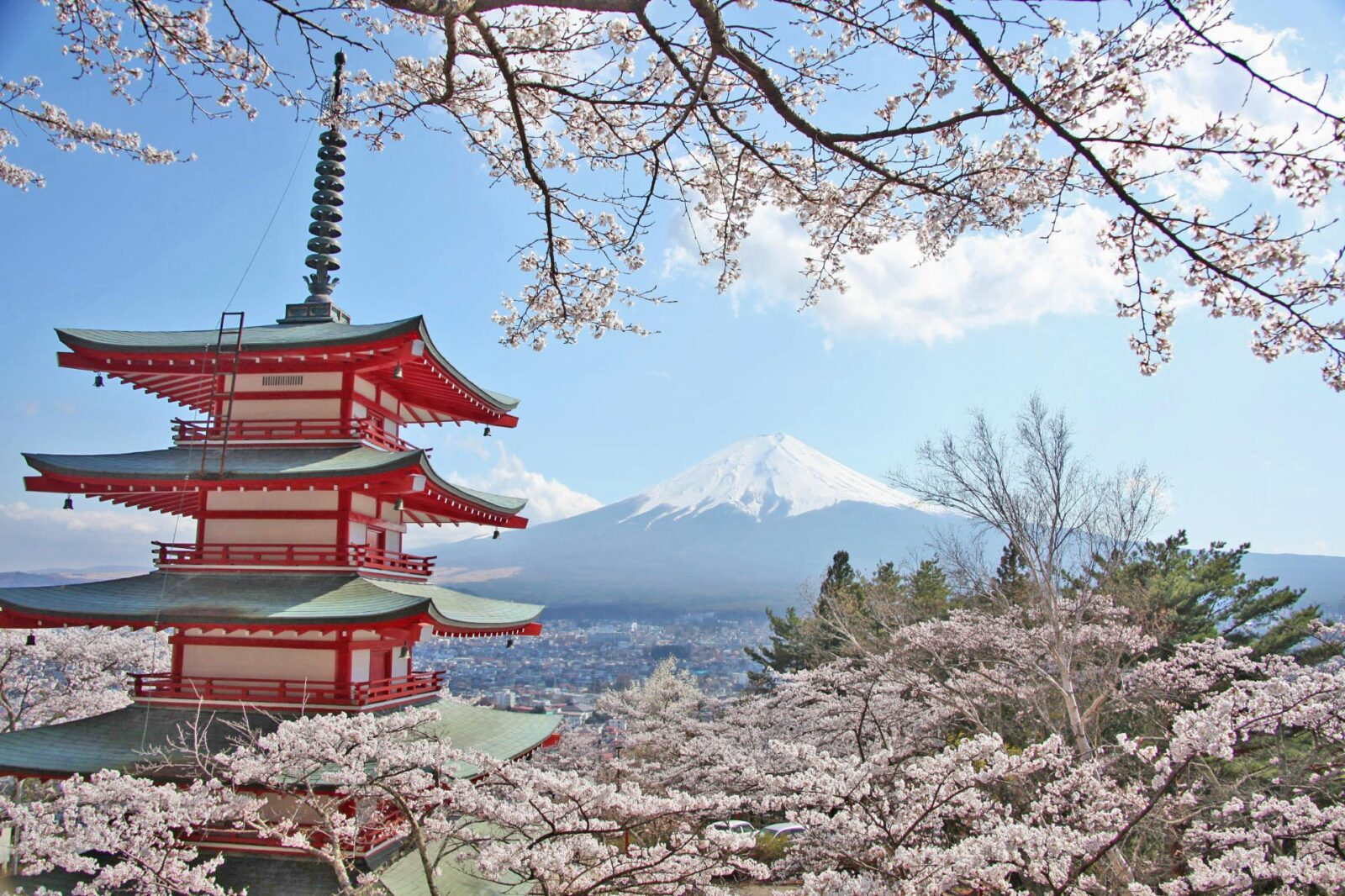桜と五重塔と富士山 春の富士山