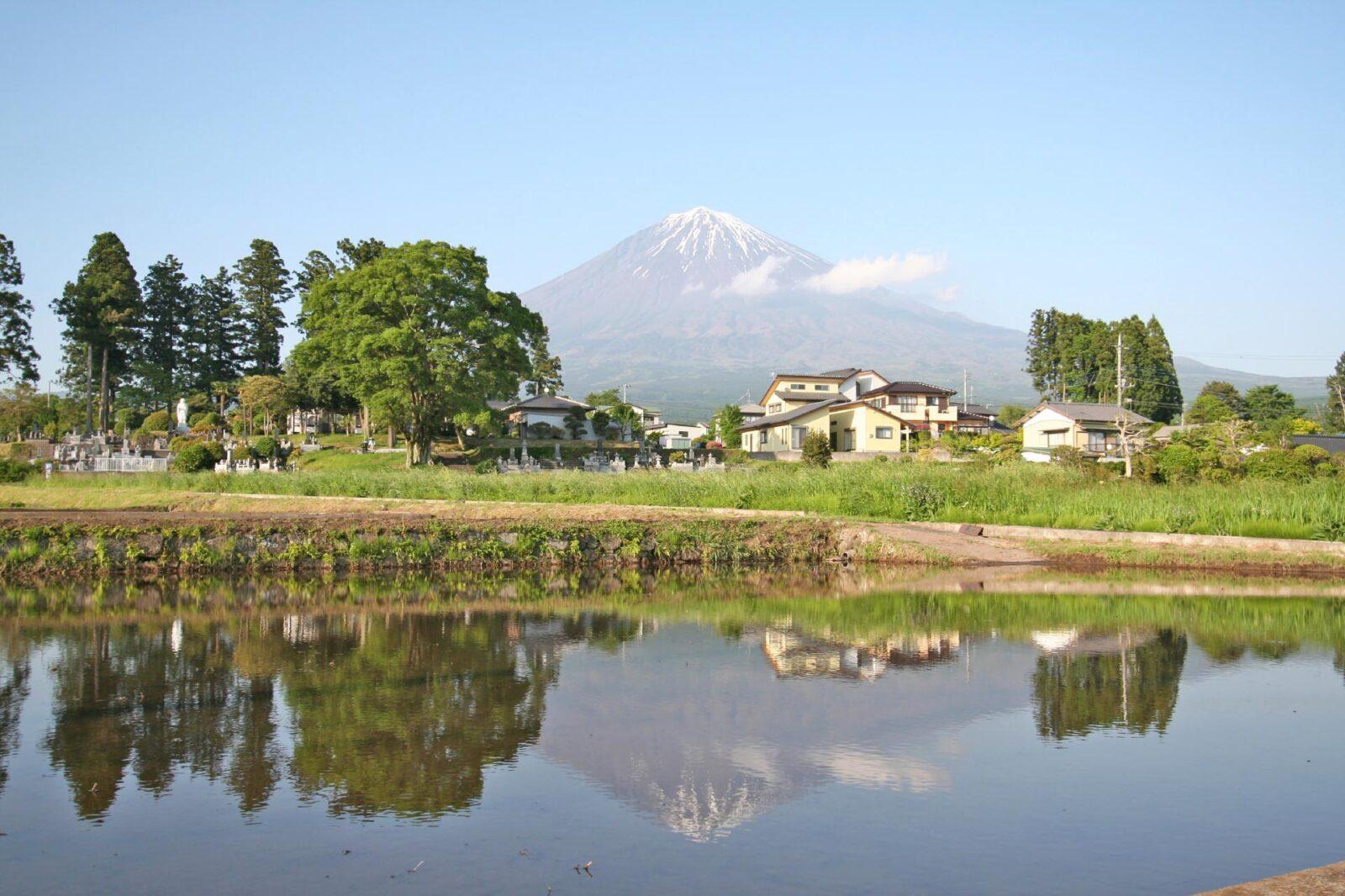 初夏の富士山
