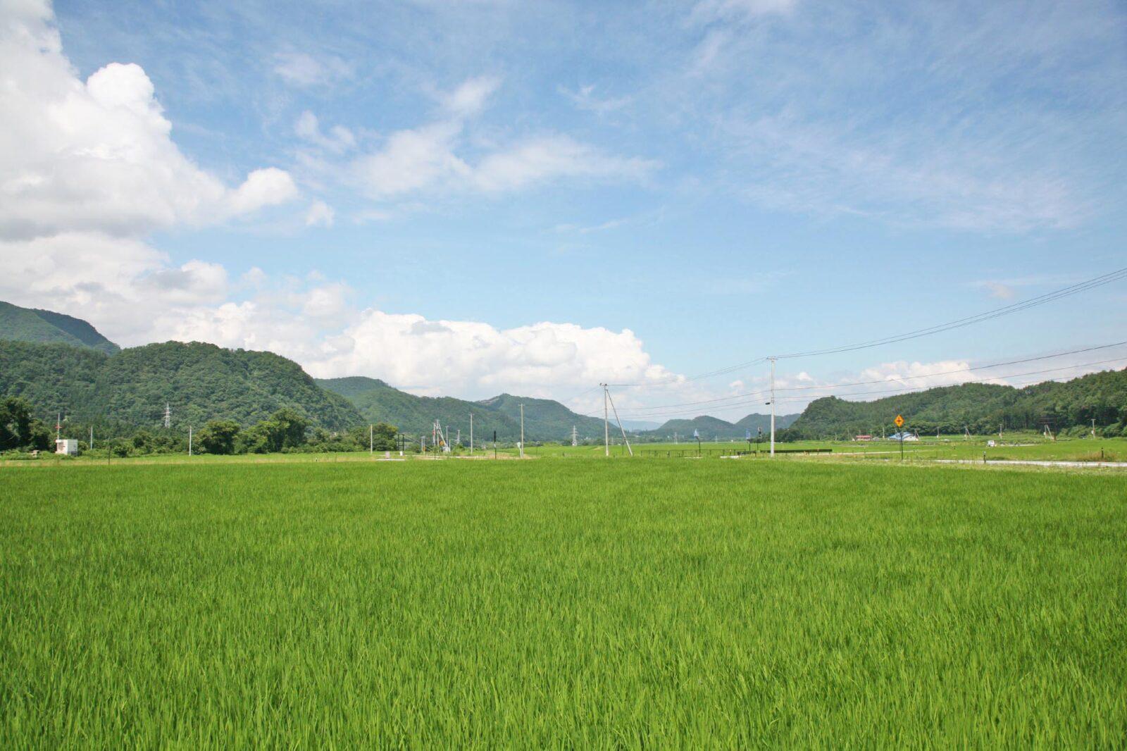 福島県会津若松