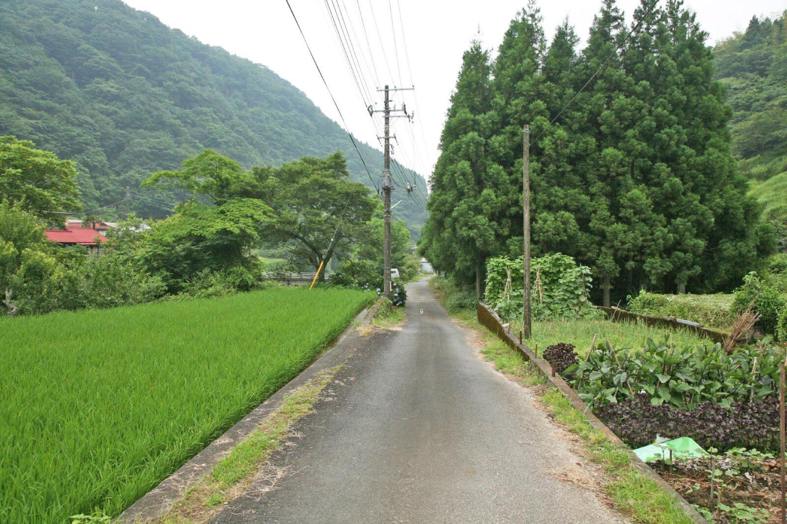 静岡県伊豆市湯ケ島