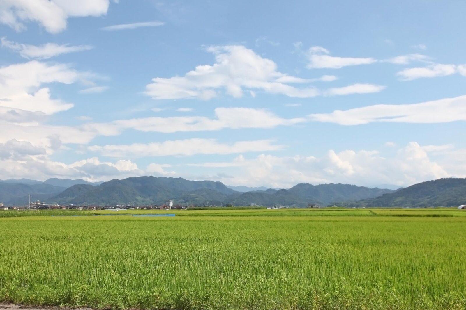 鳥取県東伯郡湯梨浜町